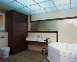 Ванная комната потолки разнообразие купить смеситель в кухню с выдвижной лейкой дешевле