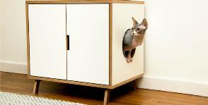 Братья меньшие: что учесть в дизайне интерьера, если в доме есть животные