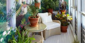 Комнатные растения: время переезжать на балкон