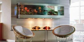 Как правильно выбрать и разместить аквариум