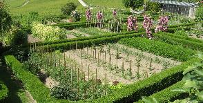 Как создать модный огород