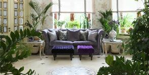 11 советов тем, кто планирует зимний сад в квартире