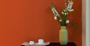 Краски для внутренних работ: изучаем материалы