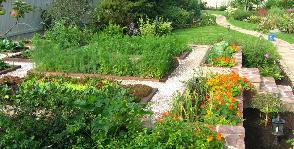Модный огород: 4 совета, как сделать грядку украшением участка