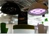 Cupole - на 360.ru: цены, описание, характеристики, где купить в Москве.