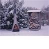 WoodStocker - на 360.ru: цены, описание, характеристики, где купить в Москве.