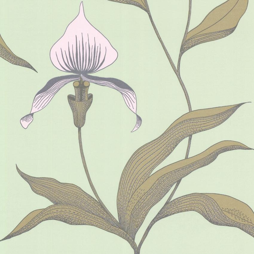 Orchid 66/4028 - на 360.ru: цены, описание, характеристики, где купить в Москве.