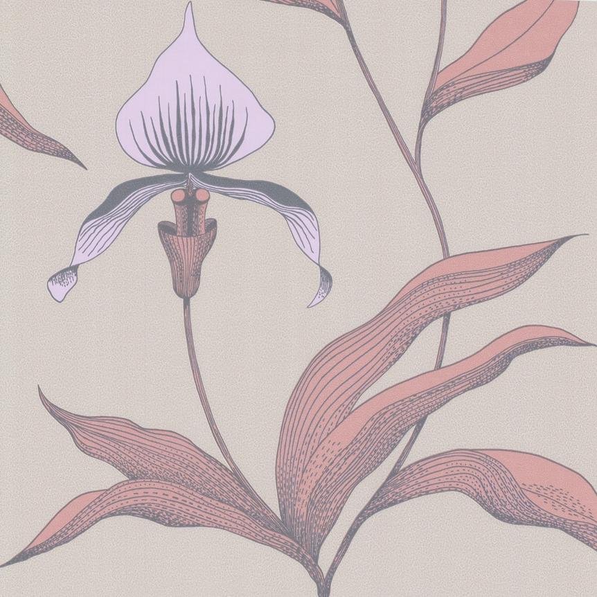 Orchid 66/4025 - на 360.ru: цены, описание, характеристики, где купить в Москве.