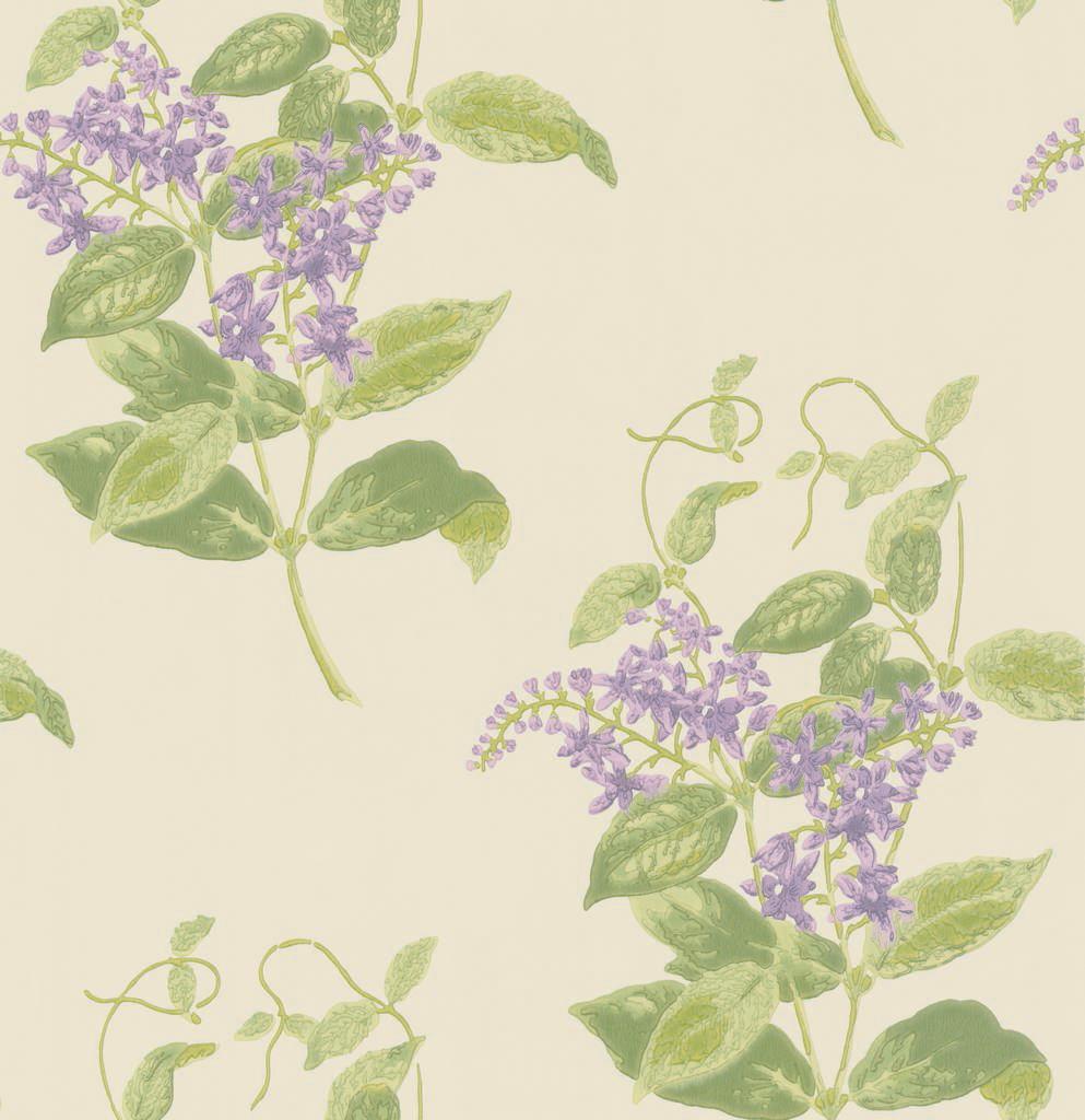 Madras Violet 100/12056 - на 360.ru: цены, описание, характеристики, где купить в Москве.