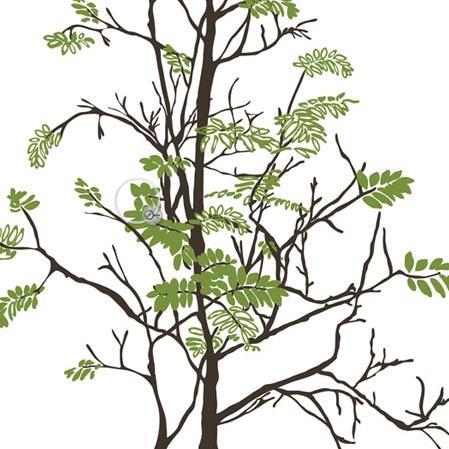 Teender tree - на 360.ru: цены, описание, характеристики, где купить в Москве.