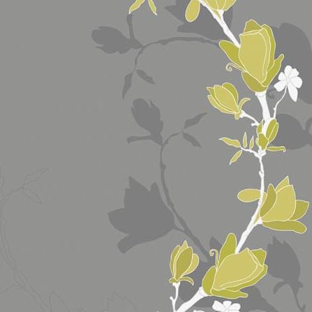 Magnolia - на 360.ru: цены, описание, характеристики, где купить в Москве.