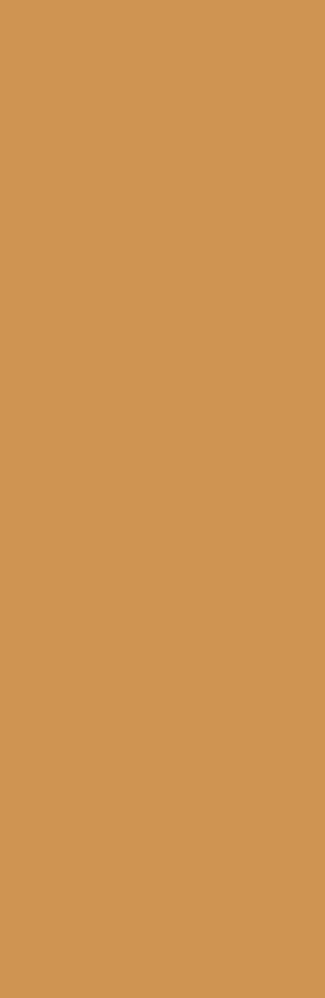 Colorfeel Arancio - на 360.ru: цены, описание, характеристики, где купить в Москве.