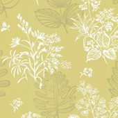  50s Line Papers Norcombe Citron,  Little Greene   &laquo;&raquo;  360.ru