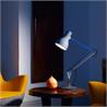 Type75 Desk Lamp Paul Smith Special Edition - на 360.ru: цены, описание, характеристики, где купить в Москве.