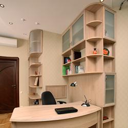 Мебель для домашнего кабинета библиотеки