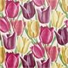 Early Tulips - на 360.ru: цены, описание, характеристики, где купить в Москве.