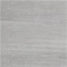 Back Silver - на 360.ru: цены, описание, характеристики, где купить в Москве.