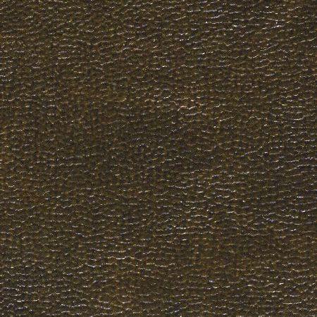Exotica leda bronze - на 360.ru: цены, описание, характеристики, где купить в Москве.