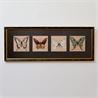 Четыре бабочки - на 360.ru: цены, описание, характеристики, где купить в Москве.