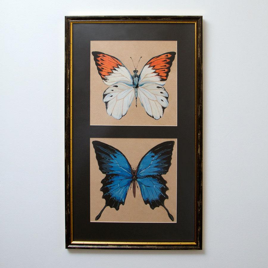 Две бабочки - на 360.ru: цены, описание, характеристики, где купить в Москве.
