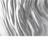ADELAIDE XIII - на 360.ru: цены, описание, характеристики, где купить в Москве.