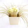 Double flower - на 360.ru: цены, описание, характеристики, где купить в Москве.