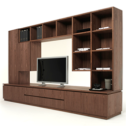 Raffaello Bookcase / TV Unit