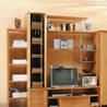 Фристайл 4_02 гостиная - на 360.ru: цены, описание, характеристики, где купить в Москве.