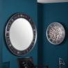 Shining sun gold/silver eyes mirror - на 360.ru: цены, описание, характеристики, где купить в Москве.